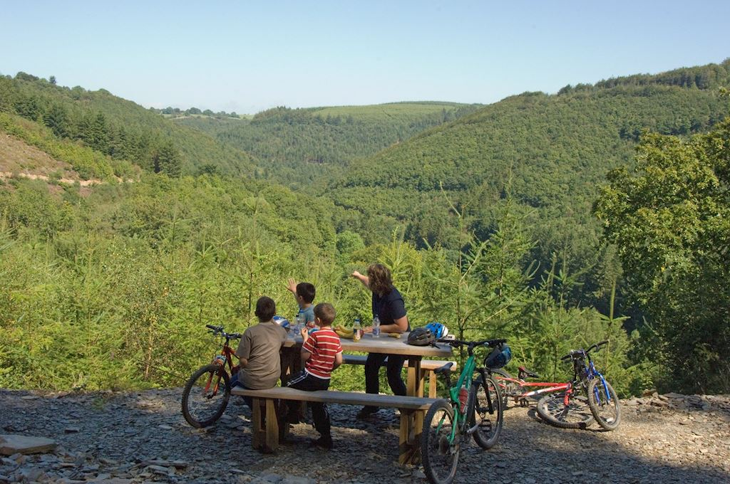 Family picnic with bikes