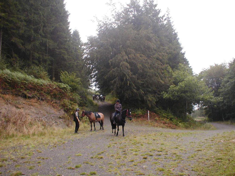 Caio horseriders