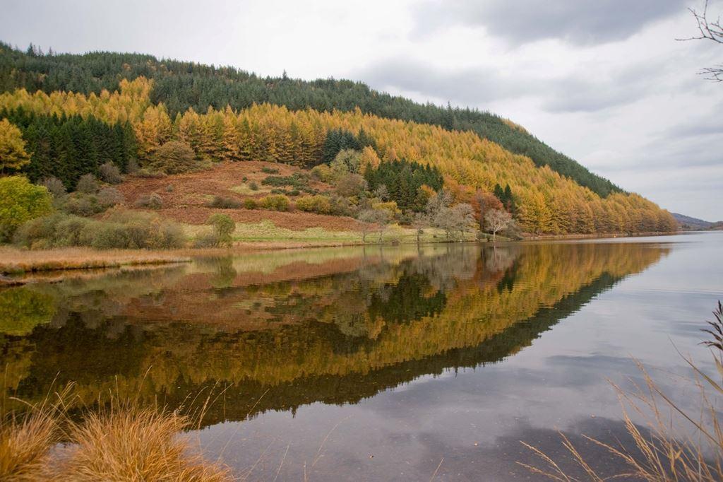 Autumn reflections Llyn Geirionnydd