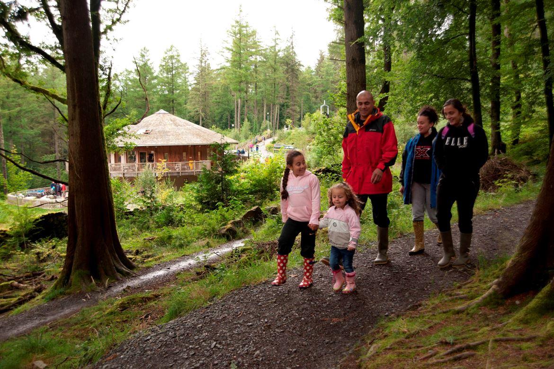 Family walking at Coed Brenin