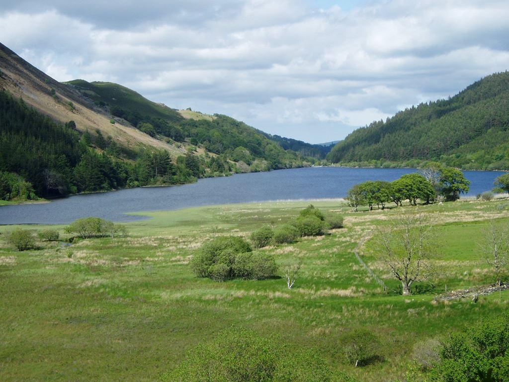 View of Llyn Crafnant