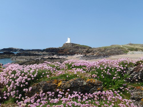 View of a lighthouse that is found at Newborough