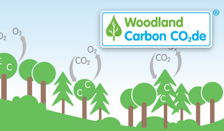 The UK Woodland Carbon Code