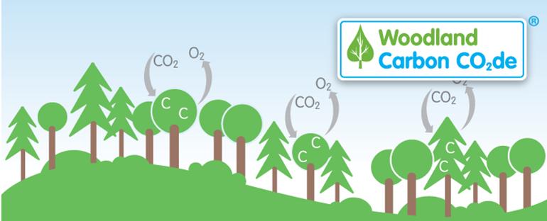 The UK Woodland Carbon Code