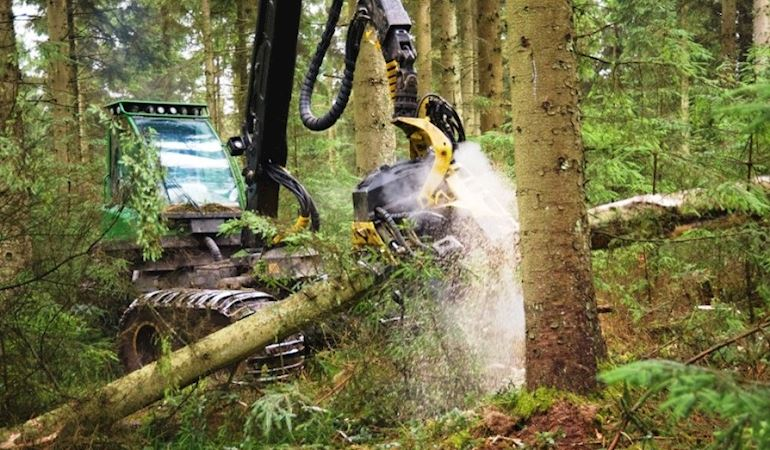 Machinery harvesting wood