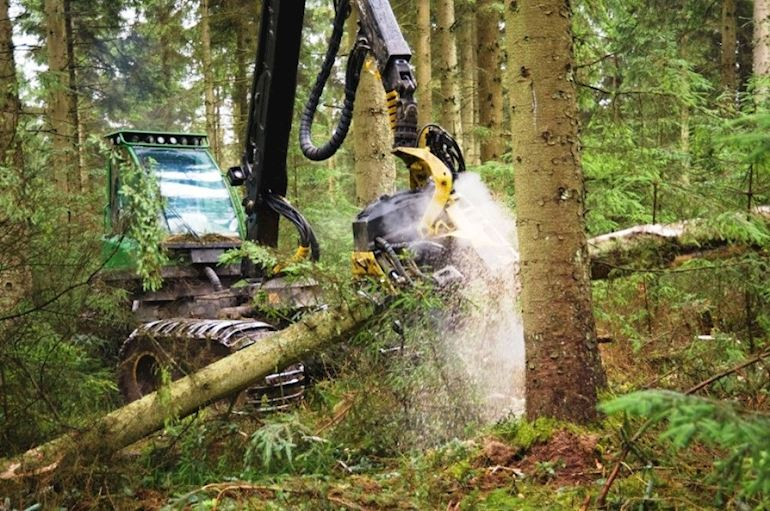 Machinery harvesting wood