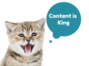 Cat saying Content is king