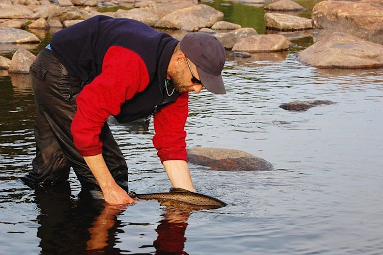 Angler releasing a salmon into the river