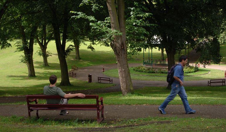 People enjoying a park