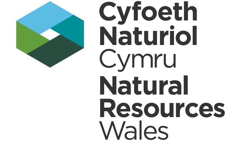Cyfoeth Naturiol Cymru logo