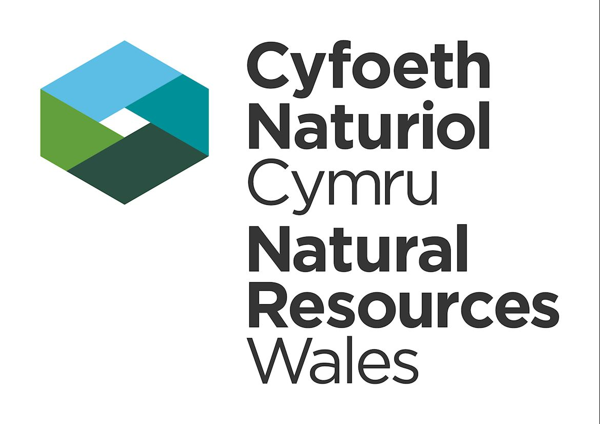 Image result for natural resources wales logo