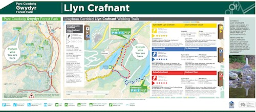 Crafnant View Trail map