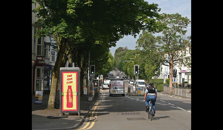 Street scene, trees, cyclist, traffic