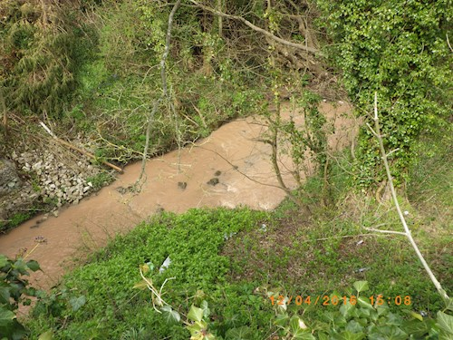 Wepre Brook river polluted at Northop hall