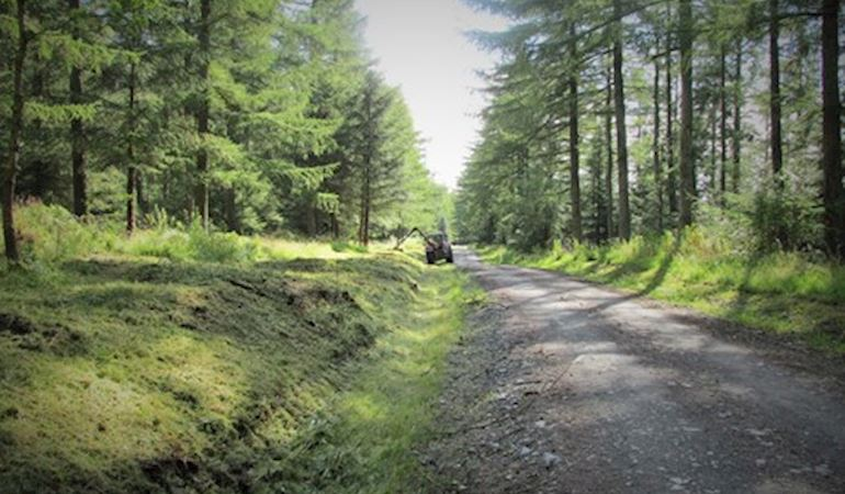 Clearing vegetation for rally spectators in the Clocaenog forest