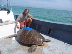 Tom Stringell next to a Sea turtle