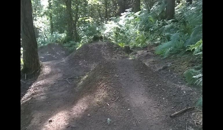 Photo showing mound of soil on a forest trail to create a jump for mountain biking