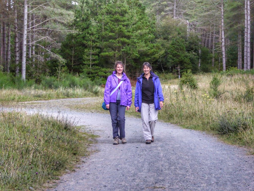 Walking in Newborough