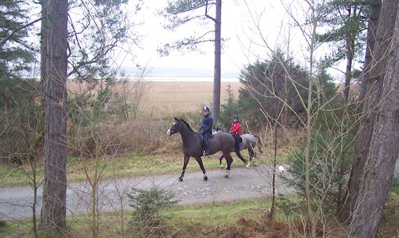 Two people horse riding through Newborough
