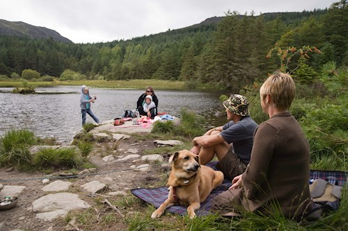 Family in Beddgelert Forest