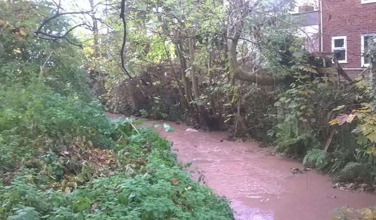 silt pollution in Wepre Brook
