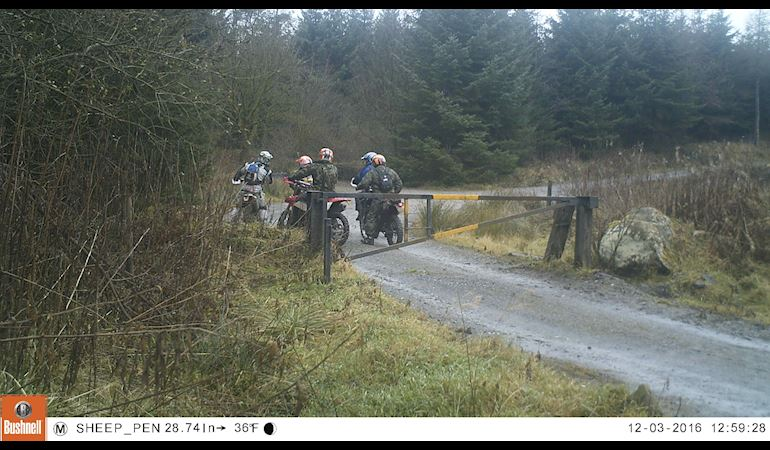 201 sheep pen gang of 5 road legal bikes