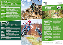 BEAST MTB trail CyB PDF