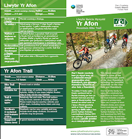 35488584577 Natural Resources Wales / Mountain Biking at Coed y Brenin Forest Park