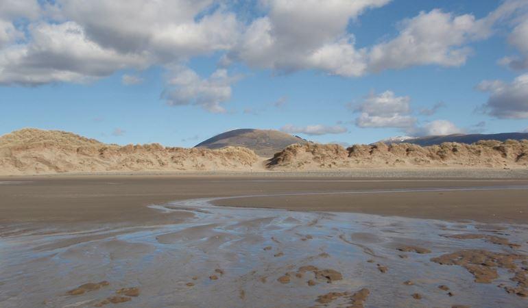 Sand dunes at Morfa Dyffryn