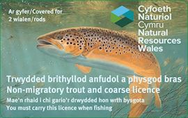 Image alerting people that they must carry a rod licence when fishing
