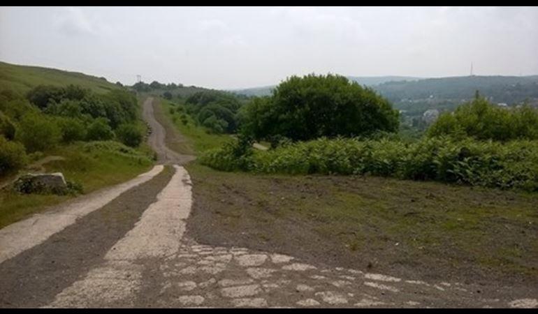 view of llynfi woodland