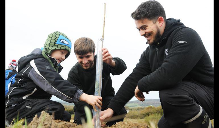 Plant apprentices