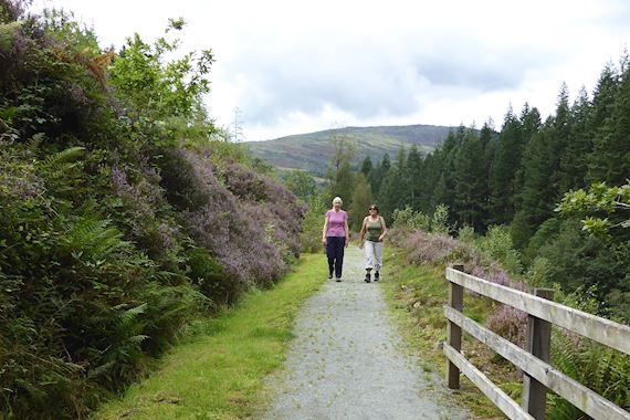 Two women walking along a trail at Pont Llam yr Ewig, Coed y Brenin Forest Park