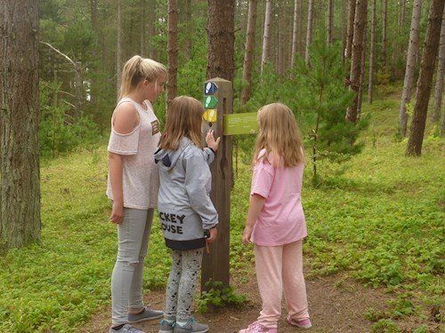 Three young girls on the animal puzzel trail