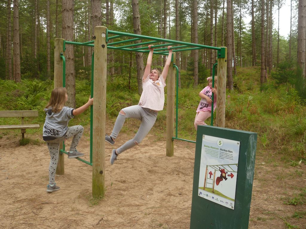 Three young girls playing on the monkey bars
