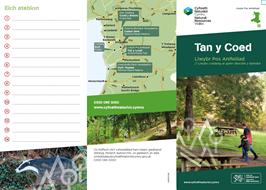 Animal puzzle trail Tan y Coed