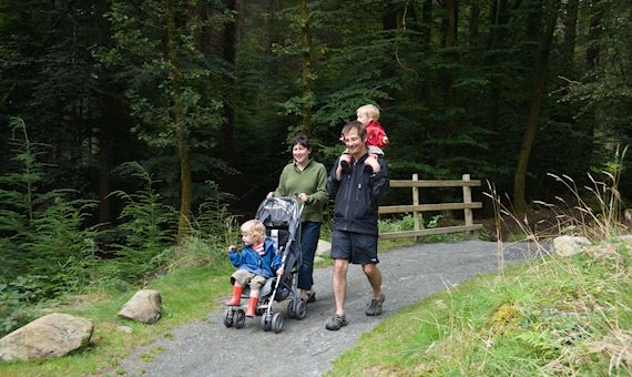 Family walking through Coed y Brenin Forest Park