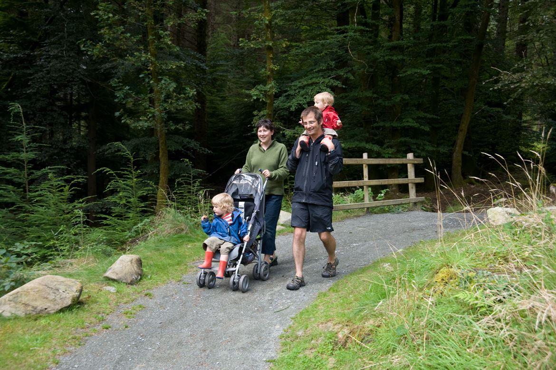 Family walking through Coed y Brenin Forest Park