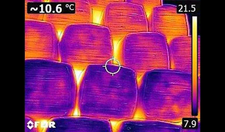 Thermal image of a wood pile