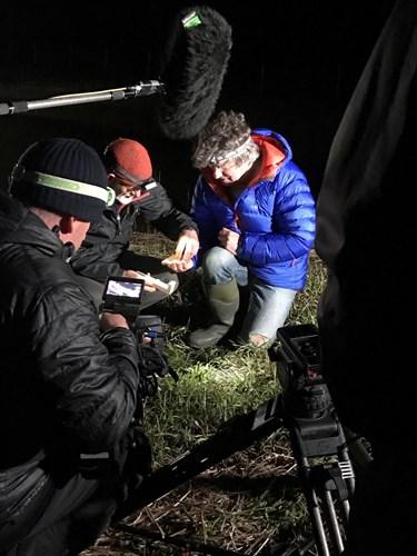 Martin Hughes-Games filming at night