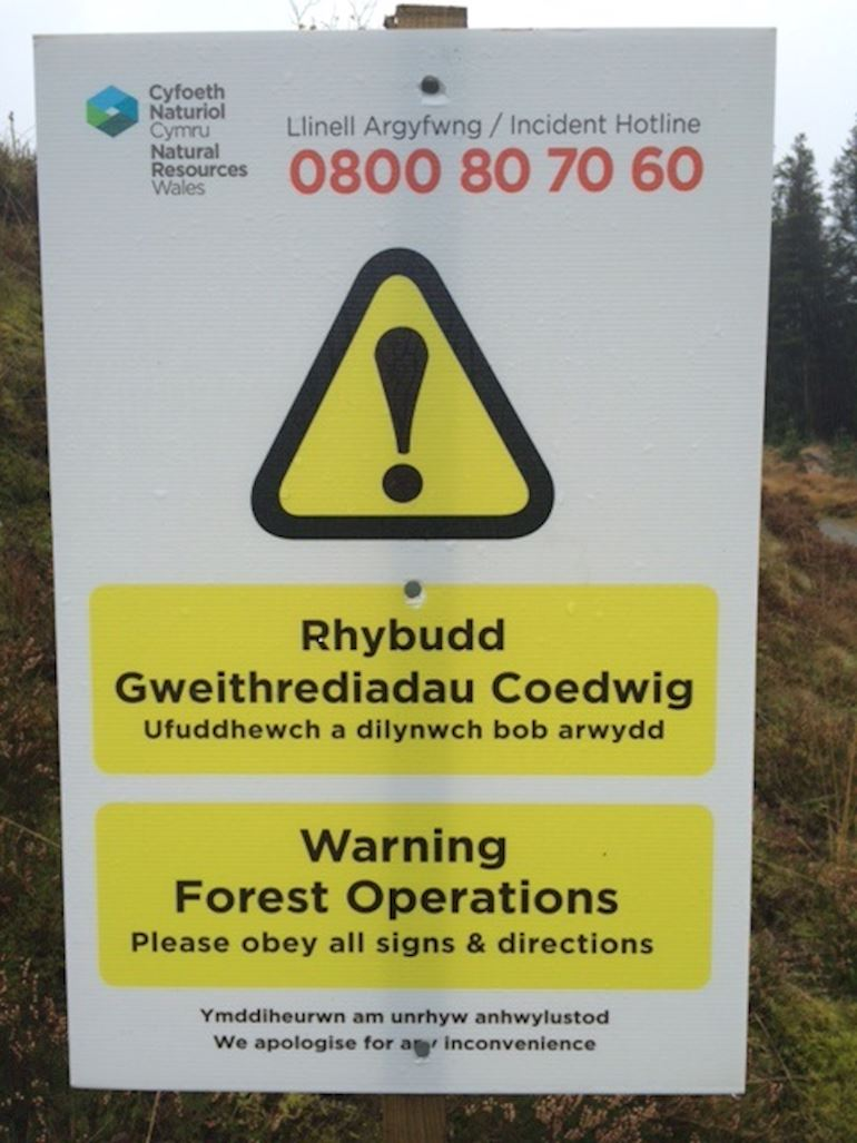 Warning Forest operations