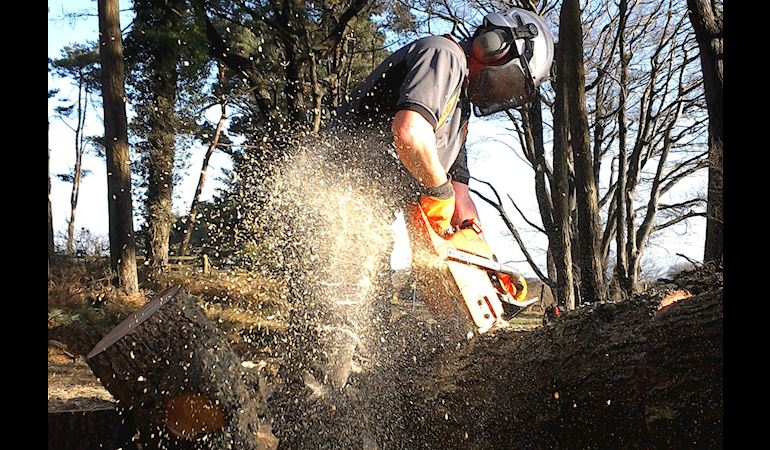 Man operating a chainsaw with protective gear cutting a felled tree