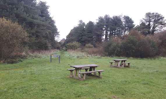 A view of some of the benches at Pen-y-Bedd