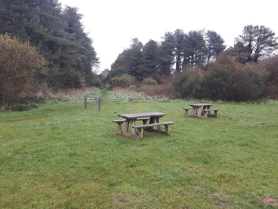 A view of some of the benches at Penybedd
