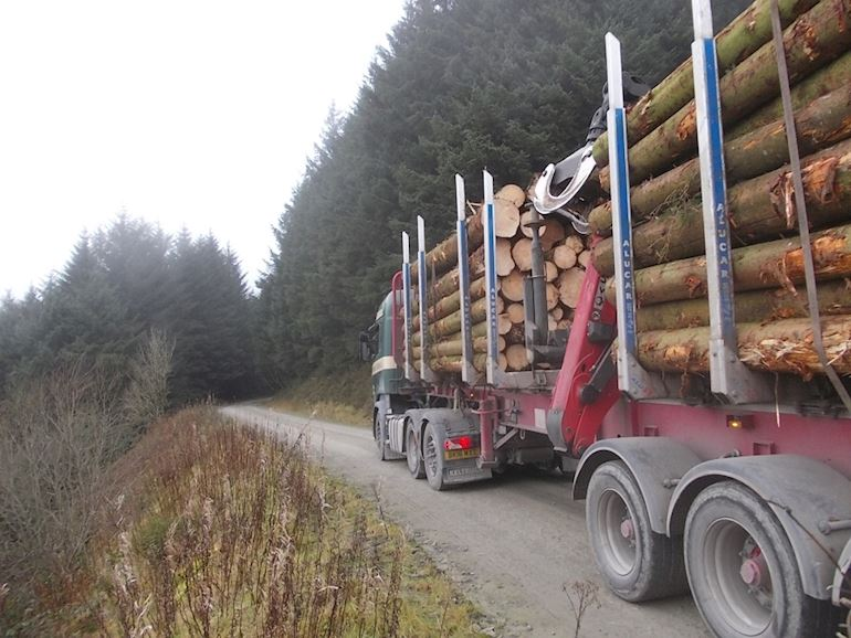 Lorry transporting timber on the A483 trunk road