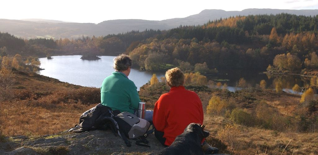 Two people with a dog look over a lake at Pont y Pair