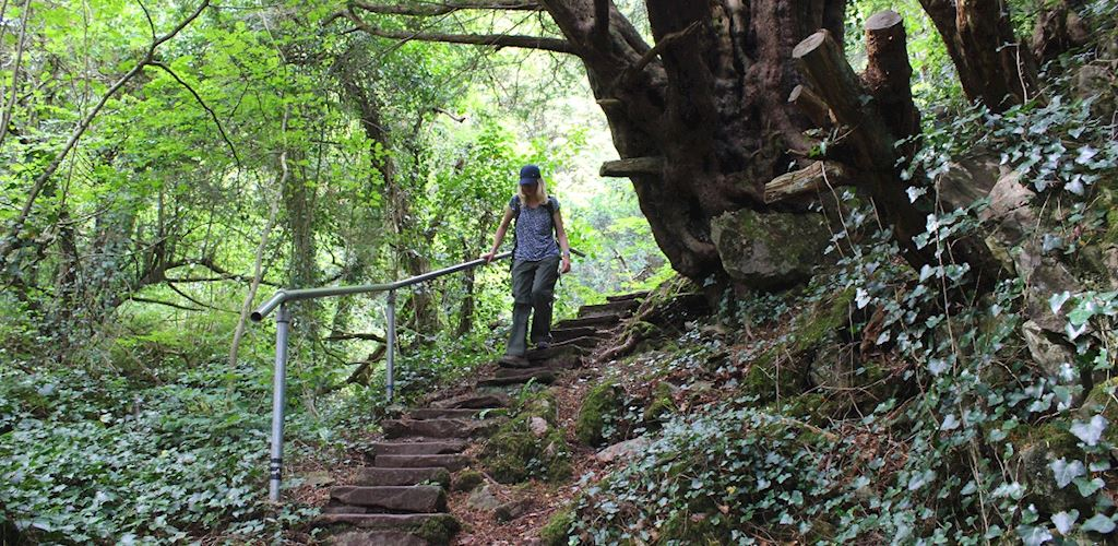 A woman walking down stone stones at Wyndcliff Wood