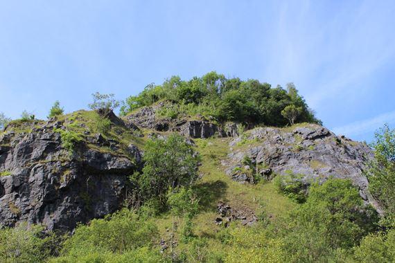 Gwarchodfa Natur Genedlaethol Carmel, ger Llandeilo