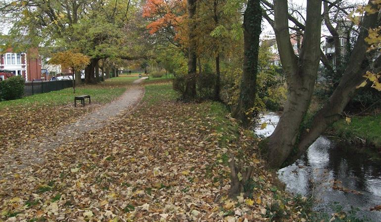 A view of Roath Brook in the autumn with trees overhanging the banks and a footpath to the left running through the park