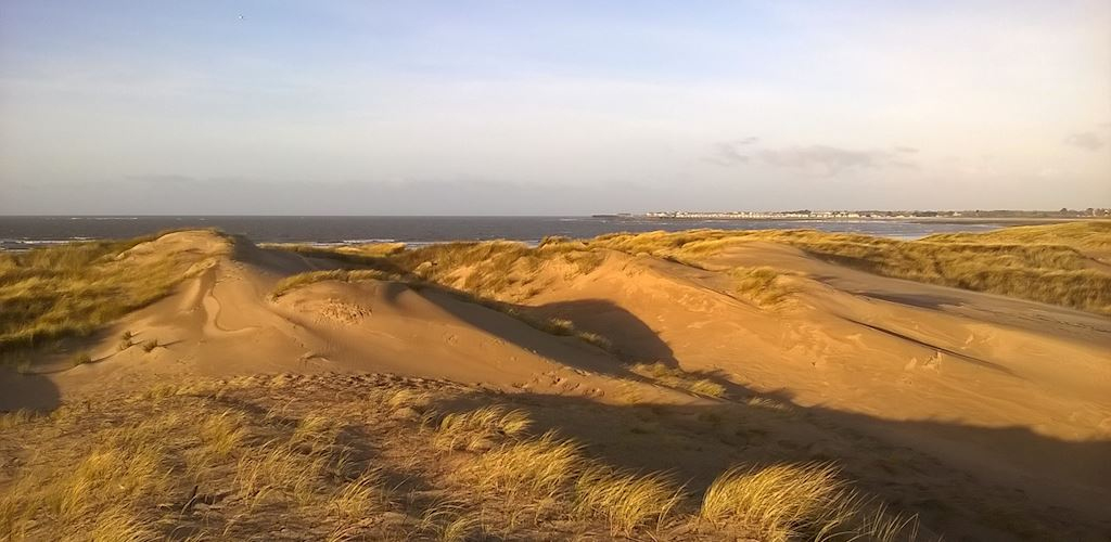 view  at top of sand dunes